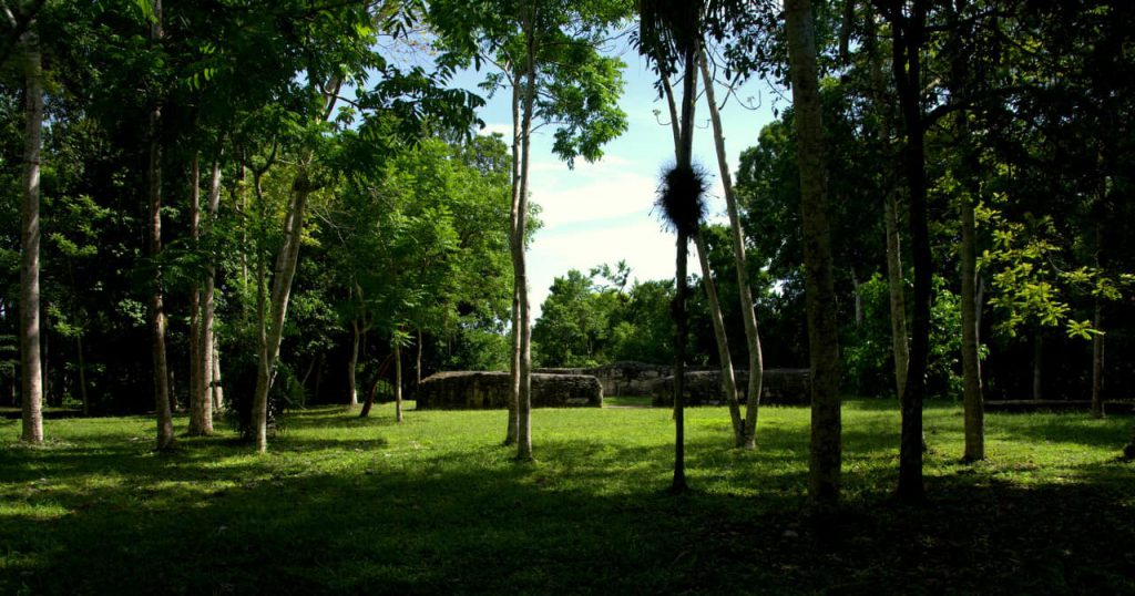 Structures in Yaxha - Guatemala