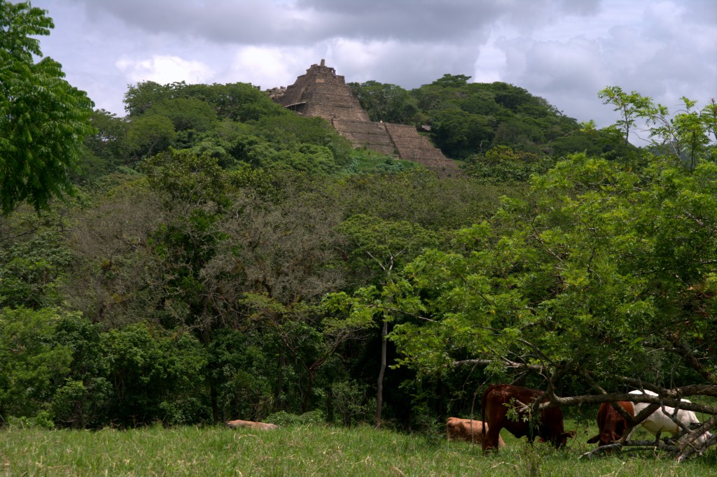 Tonina - the pyramid from a distance - Chiapas - Mexiko
