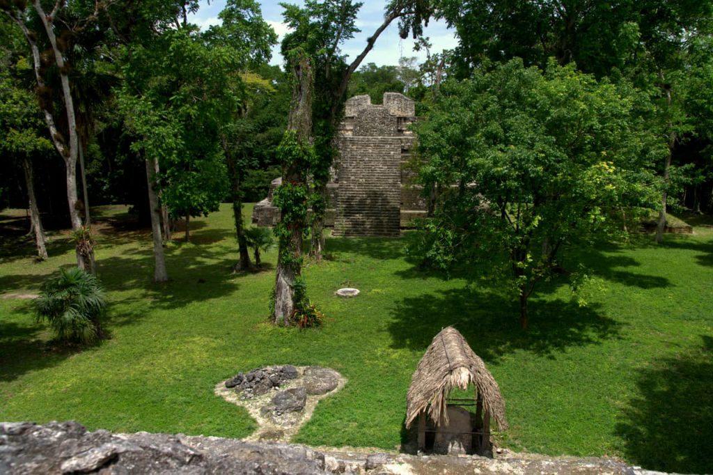 Yaxha - Pyramid with bird nests