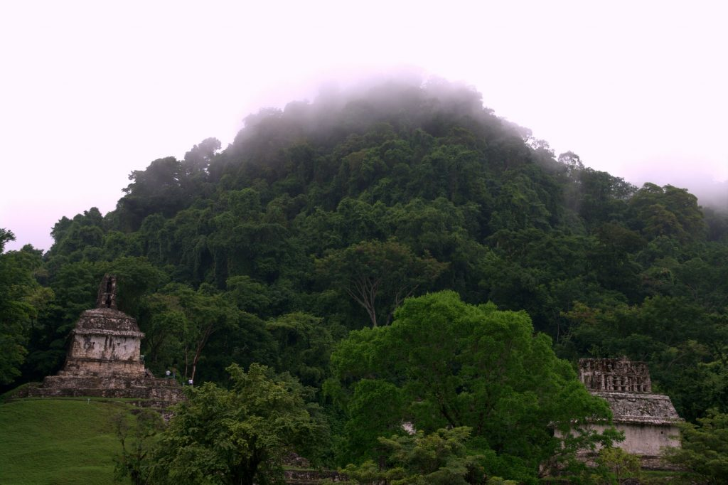 Palenque - Part of the Cross Group - on the left side: the Temple of the Cross, on the right side: the Temple of the Sun