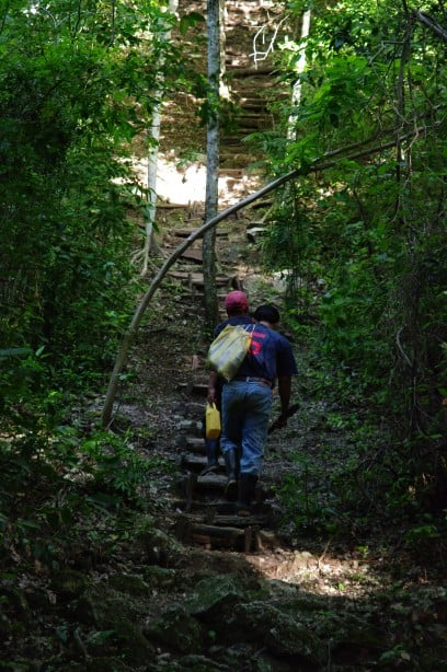 Climbing up to El Tigre - El Mirador - Amazing Temples and Pyramids