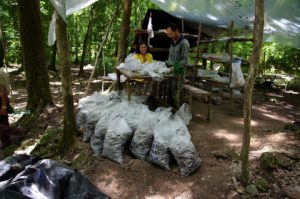 El Mirador - Archaeological Site - Archaeologists at Work - Guatemala Adventure