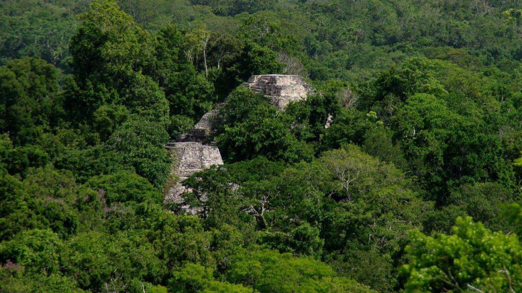 Yaxhá -Mayapyramiden im Regenwald - unbekannte Gruppe