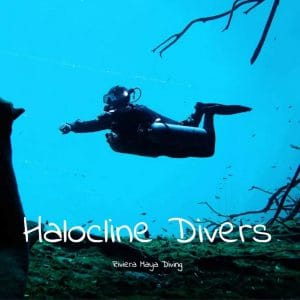 Diving in Cenotes - Halocline Divers - Yucatán - México - Riviera Maya - deutsch