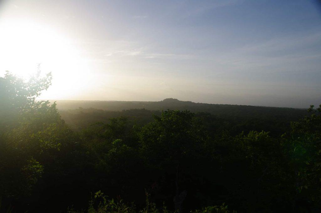 The Maya Site of El Mirador in Guatemala - Standing on the El Tigre pyramid looking over the jungle  to La Danta during the sunrise.